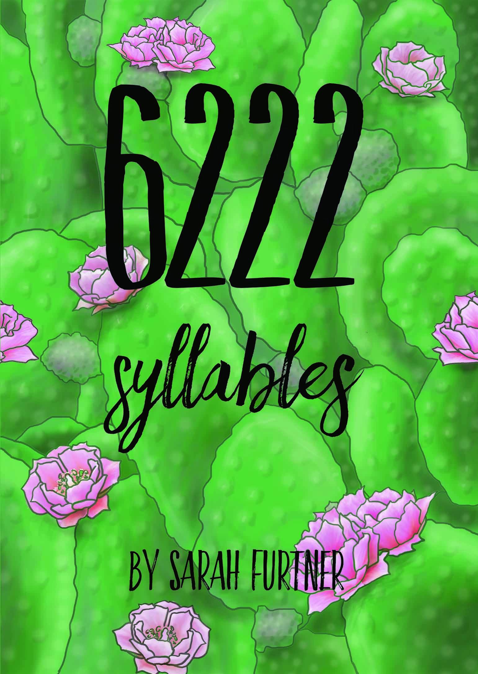Sarah Furtner 6222 ebook cover